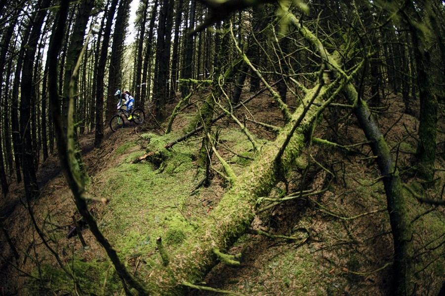 SN_Singletrack_Tweedlove_04