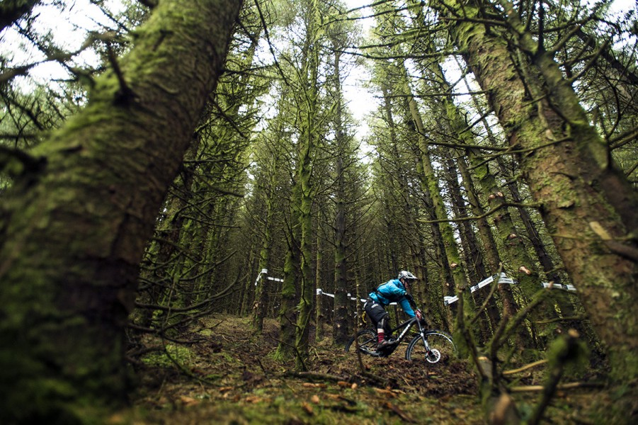 SN_Singletrack_Tweedlove_05