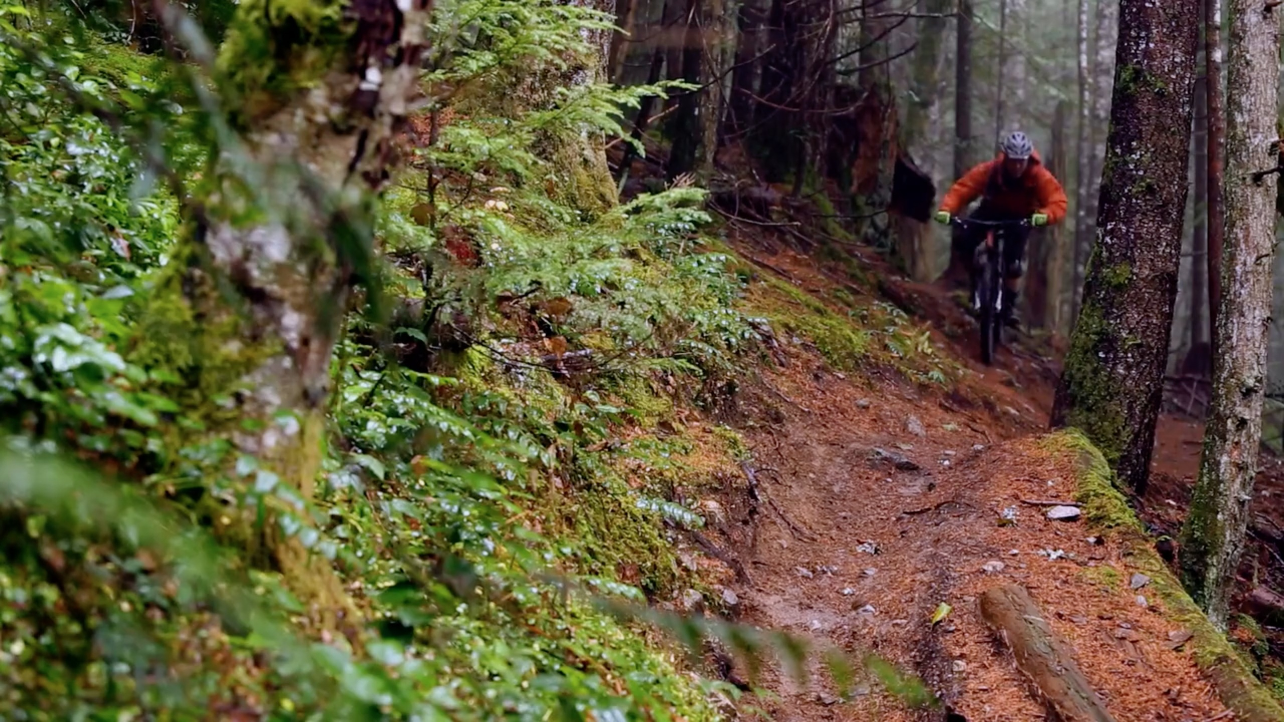 kona, north shore, squamish, trevor porter, trail riding