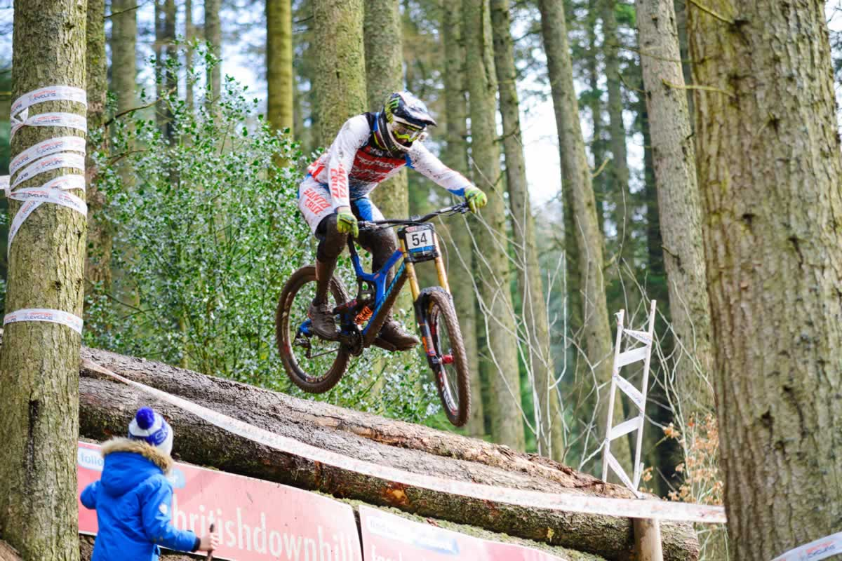 steve peat, bds, ae forest, 2016