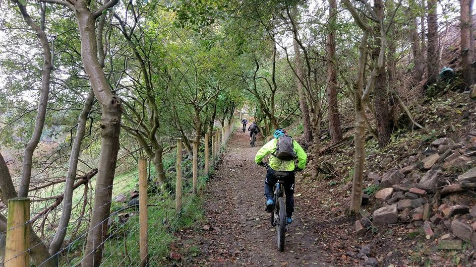 tame valley mtb trails