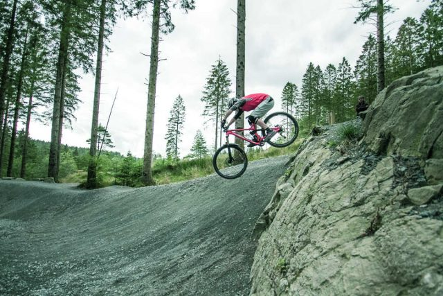 It's not all drops and jumps at Coed y Brenin, there are trails to suit everyone!