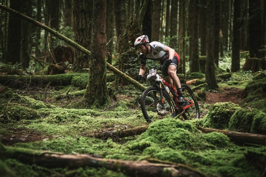 rocky mountain element bc bike race forest green loam