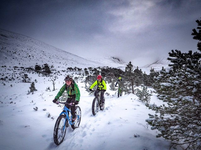 rachel sokal tom nash olly oli townsend snow fatbike fatbiking dog puppy monday morning debrief lake district mountain tom hill whiskey