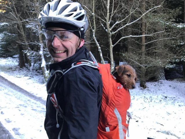 oli townsend snow puppy backpack dog