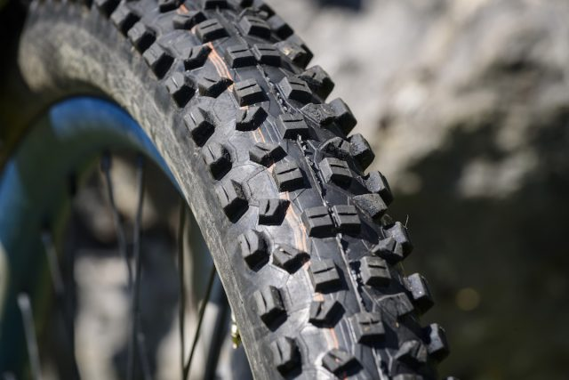schwalbe hans dampt tubeless tyre issue 114