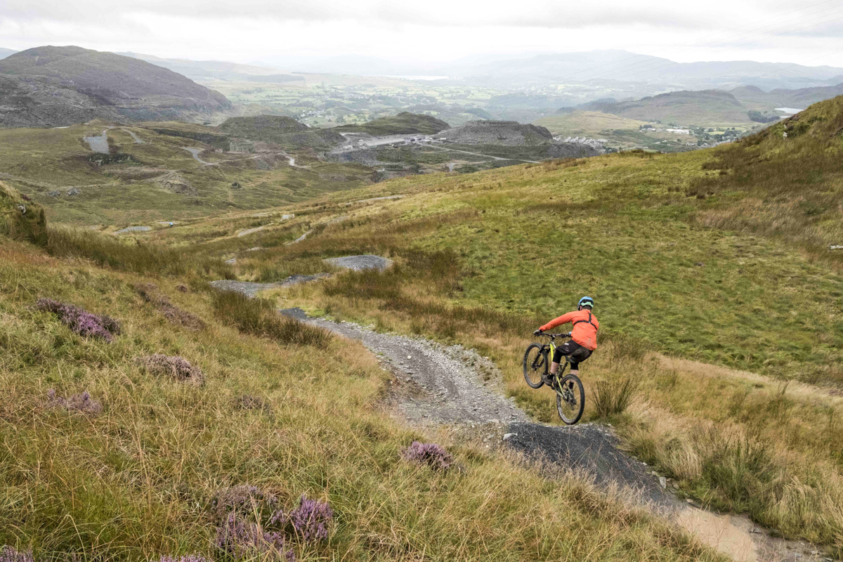 78663bffbd8 New Trails Coming To Antur Stiniog Bike Park In North Wales! - Singletrack  Magazine