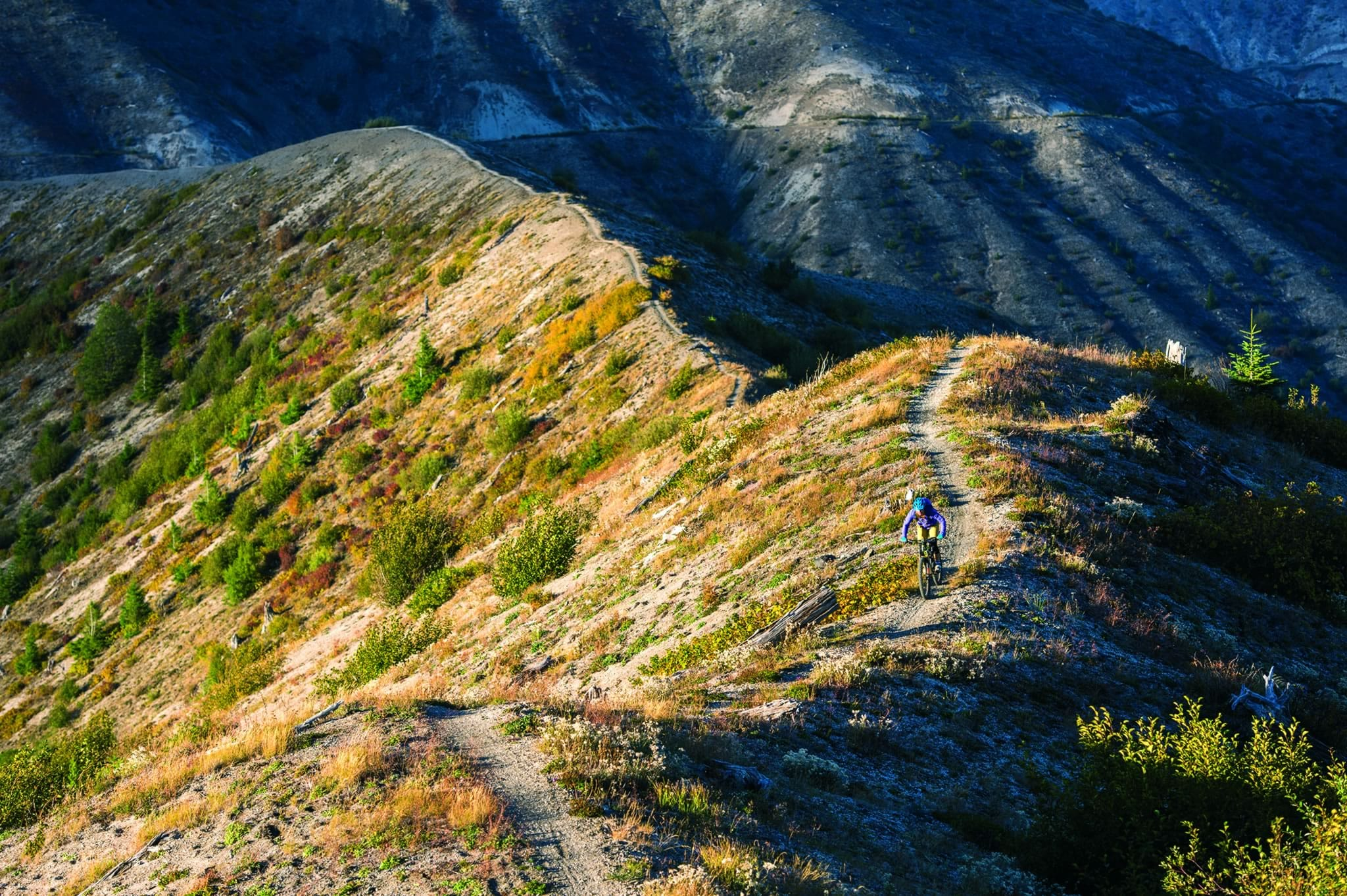 Singletrack Issue 101 GPX File