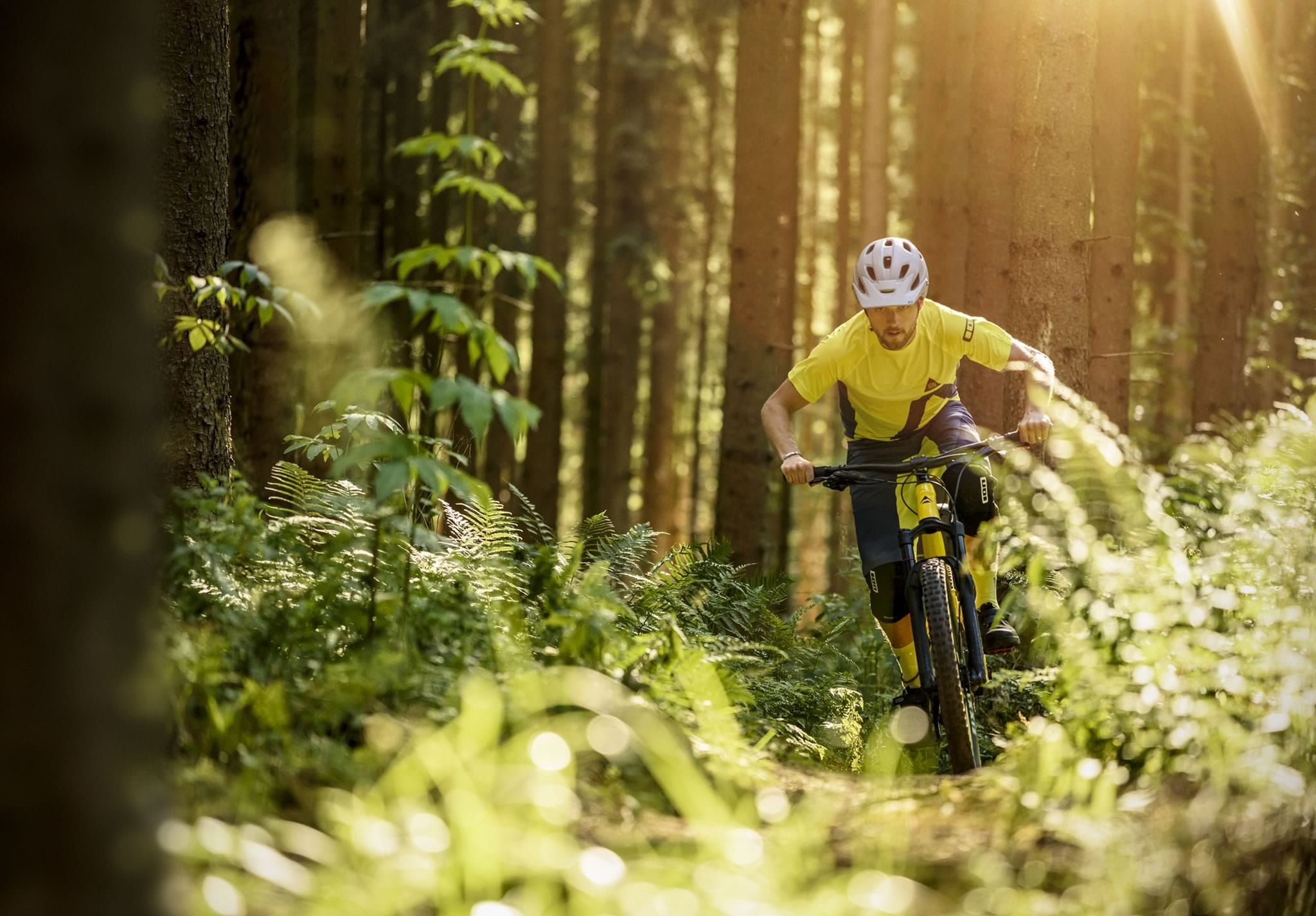 Singletrack Issue 114 GPX File