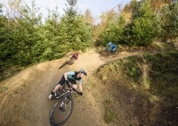scott spark giant anthem specialized epic wil rachel dalby forest