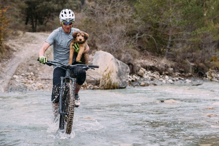 specialized stumpjumper ainsa spain wil dog