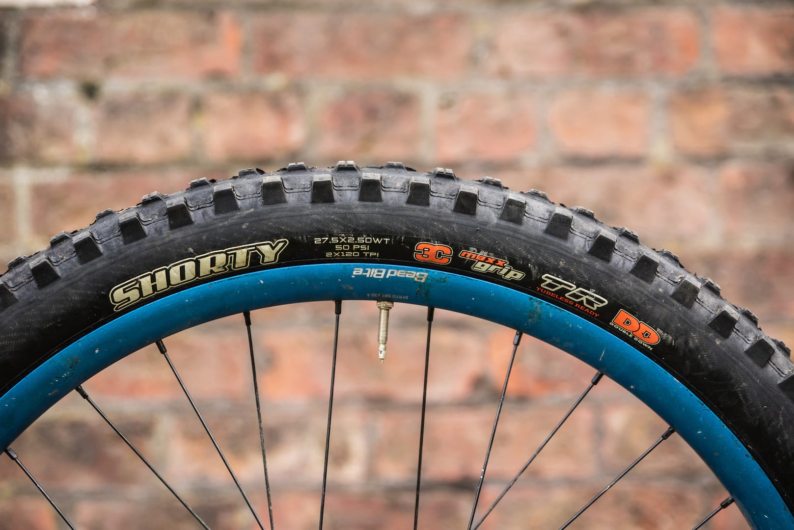 maxxis shorty doubledefence