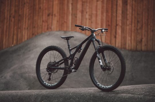 specialized stumpjumper evo carbon