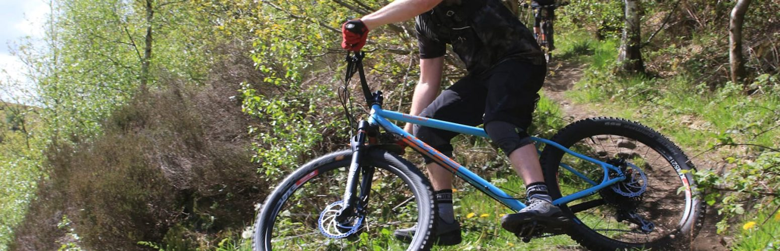 pace rc529 review andi sykes