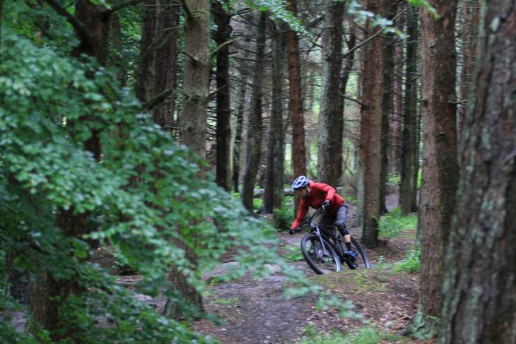 2020 specialized fuse comp wil hurstwood