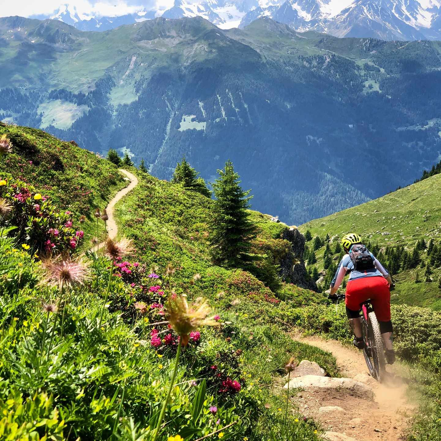 singletrack magazine subscription verbier vic alker