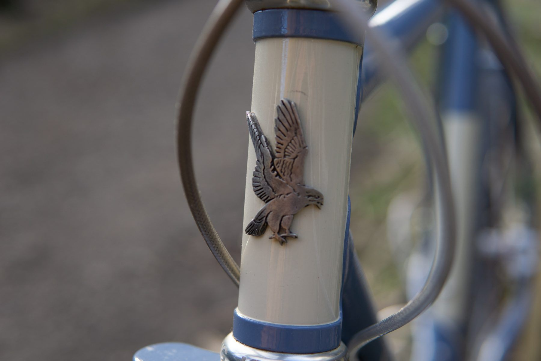Singular Peregrine head badge