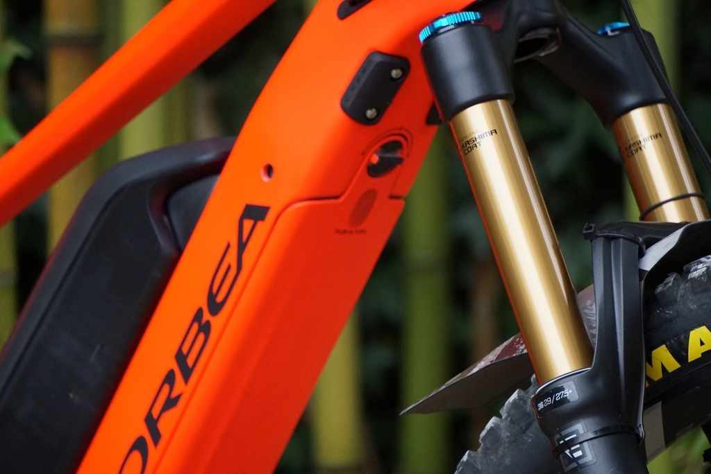 2020 Orbea Wild FS first ride review