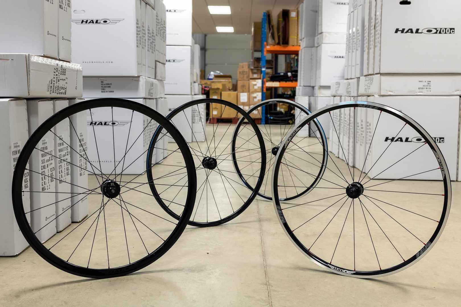 Dynamo hub for gravel bike