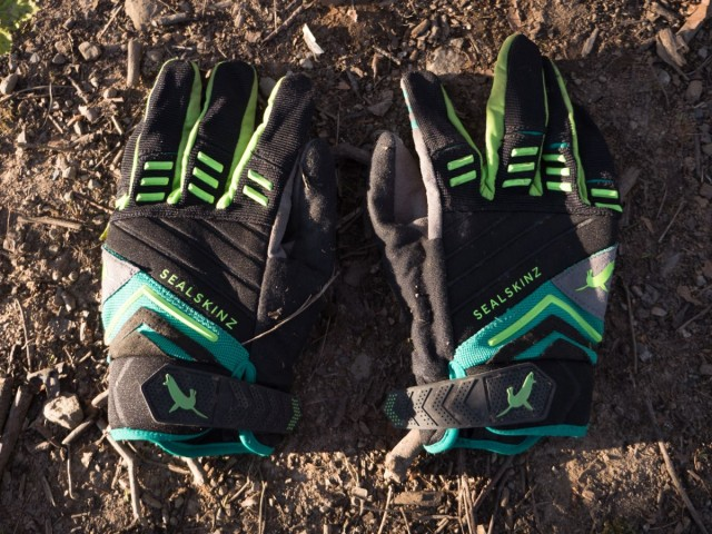 Sealskinz Dragon Gloves
