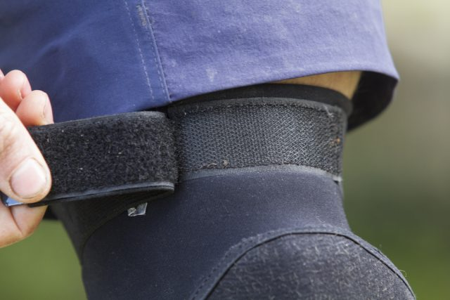bluegrass eagle crossbill knee pad